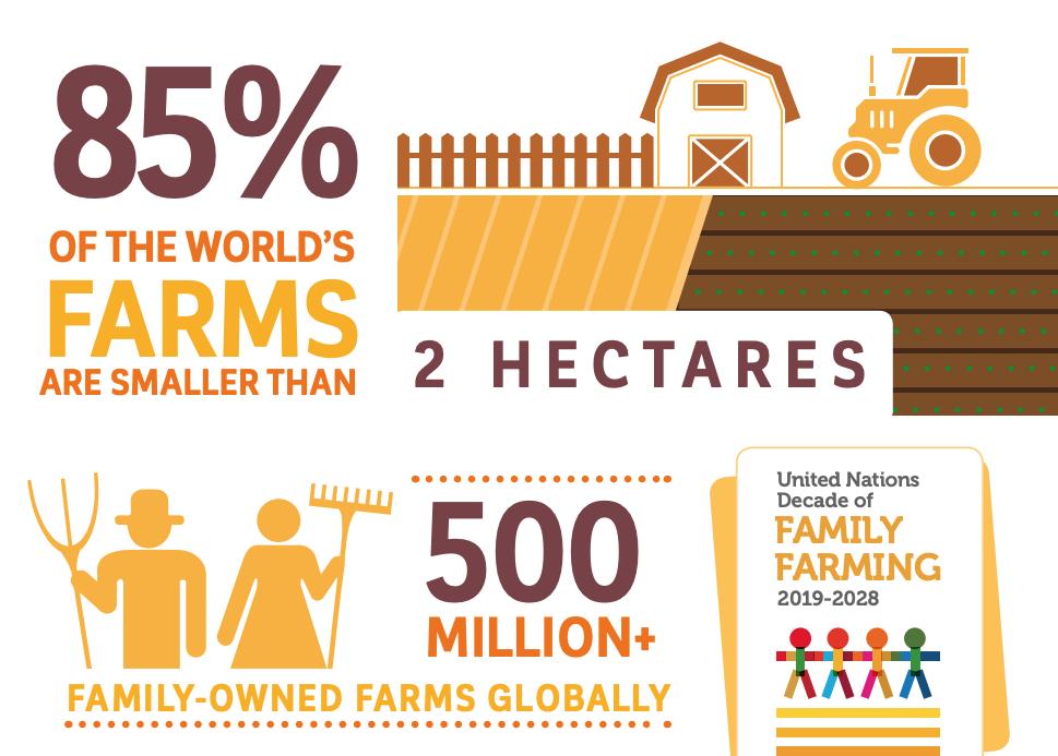 Méthodologie de l'Observatoire des Agricultures du Monde de la FAO