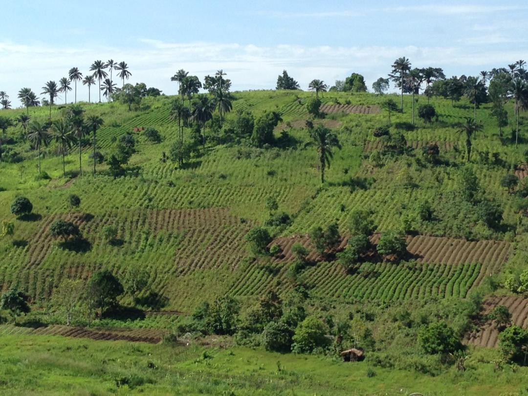 Formation au diagnostic agraire dans la Réserve de Biosphère de Luki